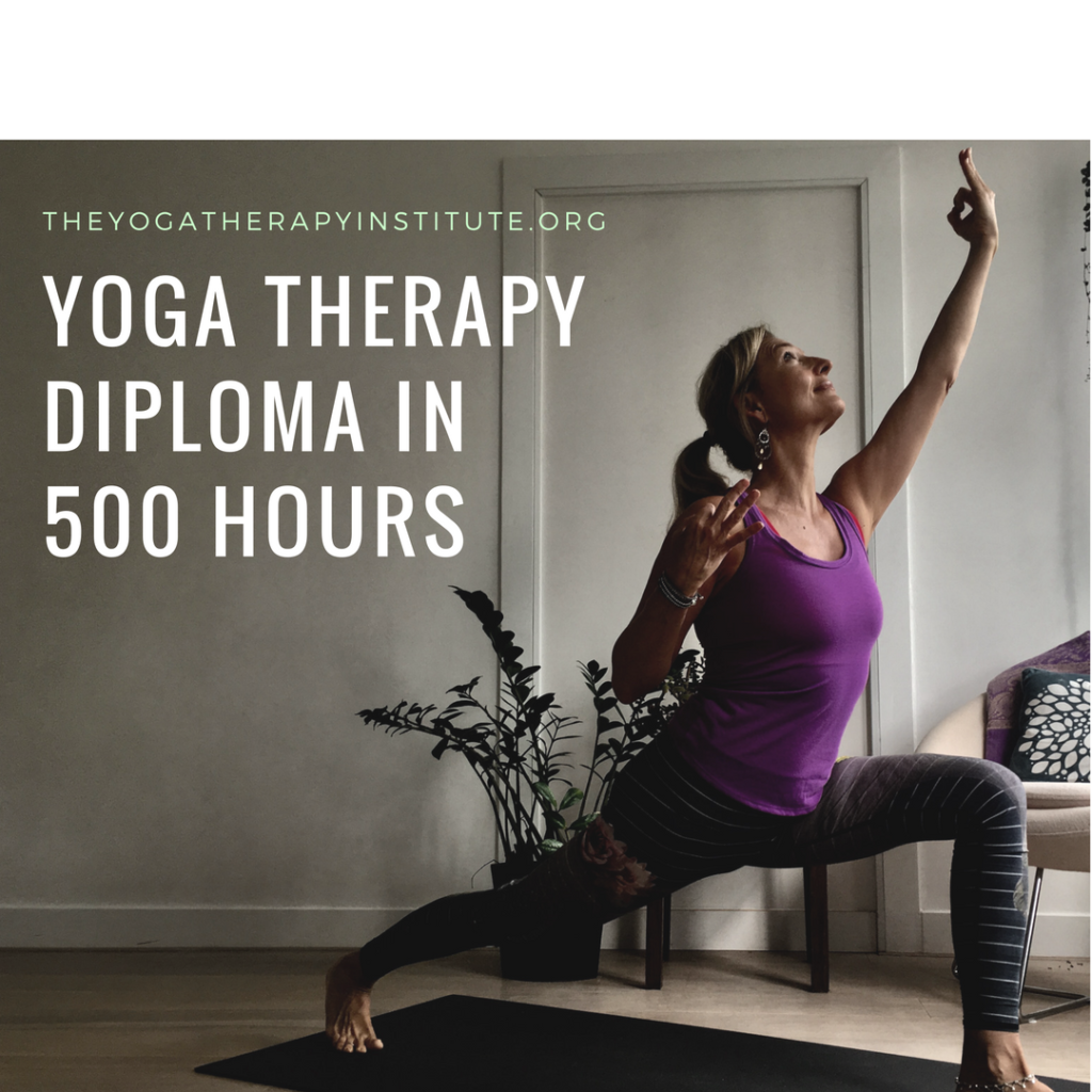 Yoga Therapy Diploma 500 hrs