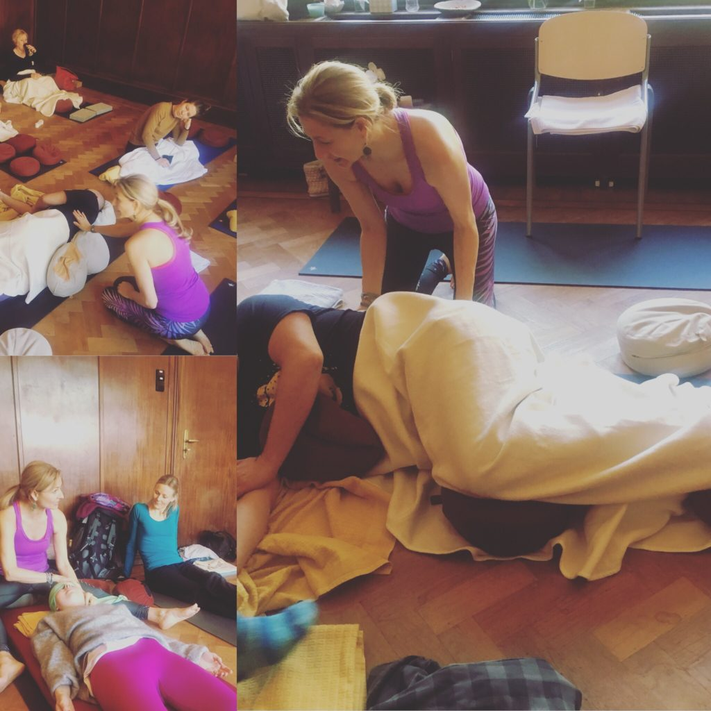 Yoga Therapy Foundation 100 hours